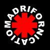 Imagen de perfil de MADRIFORNICATION (Tributo RED HOT CHILI PEPPERS)